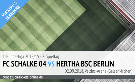 Schalke Hertha Bundesliga Tickets (02.09.2018)